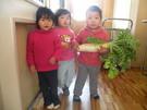 「みてみて!」大根の収穫 3月上旬